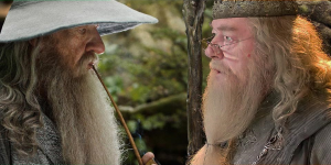 Gandalf face à Dumbledore.