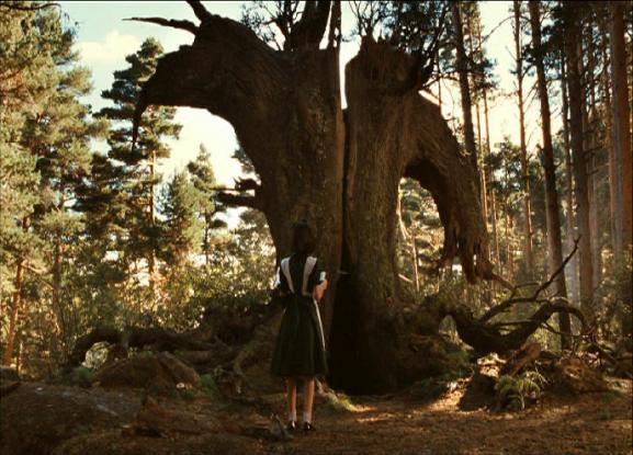 L'arbre de la première épreuve évoquant la tête d'un bouc.