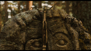 L'insecte sur la pierre, une espèce de gros phasme/sauterelle en images de synthèses.