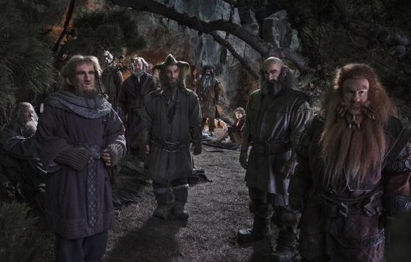 Image de la trilogie le Hobbit