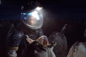 La scène des oeufs dans le premier Alien