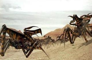 Deux soldats arachnides dans Starship Troopers