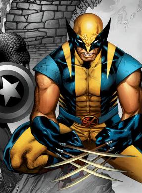 Wolverine par David Finch tel qu'il apparait sur une converture alternative de New Avengers #3