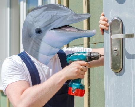 Montage montrant un dauphin (l'animal) remplacer une serrure.