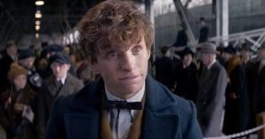 Et vraiment, vraiment, le personnage de Newt interprété par Redmayne est totalement charmant. Et même si j'ai pas mal râlé contre Une merveilleuse histoire du temps, il faut quand même le dire, Eddie est un des meilleurs acteurs de la génération.
