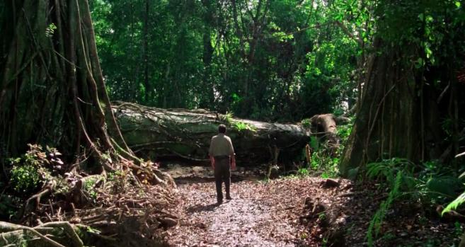 Le convoi arrive devant un énorme tronc d'arbre tombé en travers de la route.